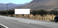 Ruta 5 Norte km 51, Rungue.