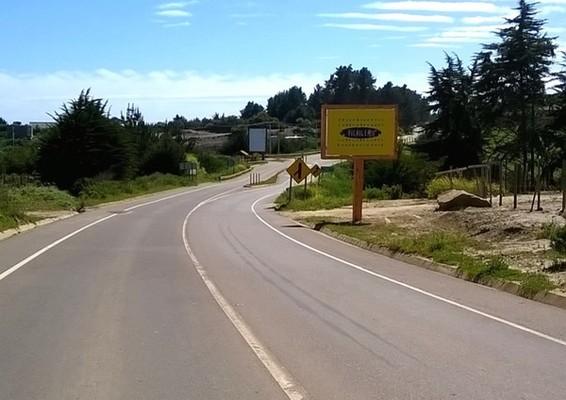 Foto de Camino a Punta de Lobos desde Cahuil, a 50 km del cruce