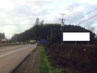 Ruta 5, camino Temuco - Lautaro