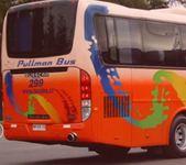 Thumb luneta bus 1
