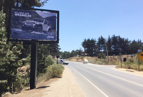 Foto de Camino a Punta de Lobos