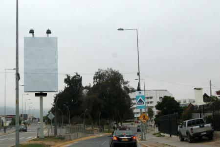 Foto de Bandejon Central/ Avda. Videla al llegar a Balmaceda