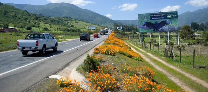 Foto de Ruta F20 Nogales Km 18.340 hacia Santiago