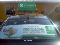 Luneta Colectivo Santiago Sector Oriente