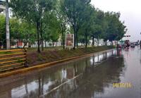 Av. 28 de Julio con Pasaje Las Begonias