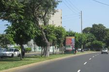 AV.  CESAR VALLEJO  / FRANCISCO DE ZELA