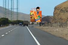 Panel - Carretera Panamericana Sur Km 68.50